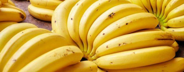 I gatti possono mangiare banane?