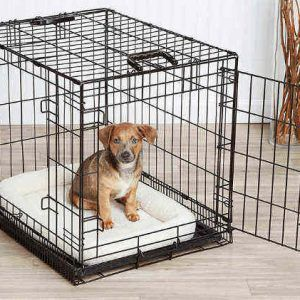 Mejores jaulas metálicas para perros