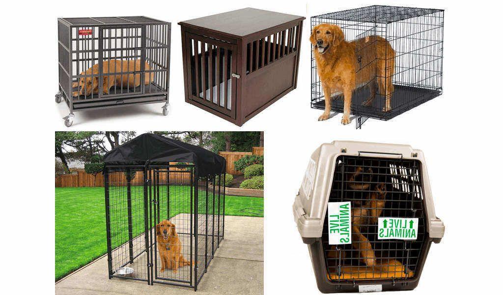 Mejores jaulas para perros